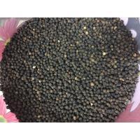 Kerala Black Pepper