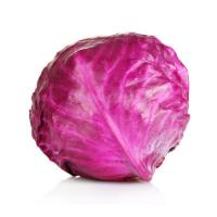 Red Cabbage - Ruby Ball ( International Variety )