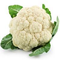 Fresh cauliflower available direct from farmer