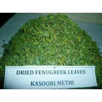 Dried fenugreek KASOORI METHI