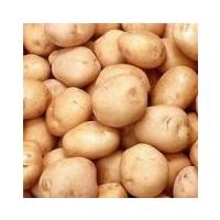 Fresh Organic Potato @Rs 12kg