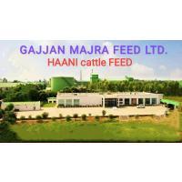 HANNI CATTLE FEED हाणी पशुआहार