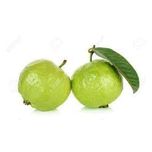 Guava1.jfif
